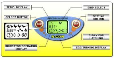 mini egg incubator instructions